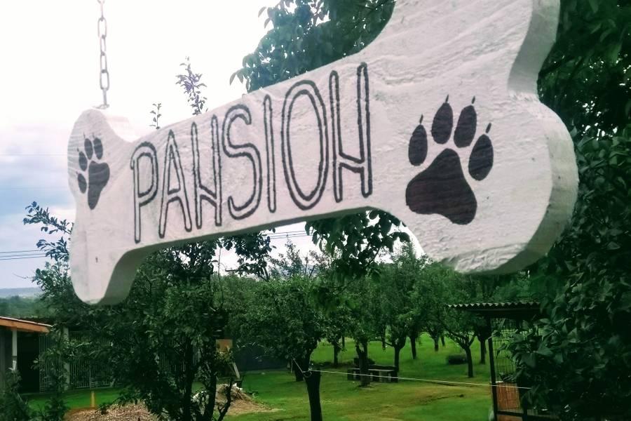 "Pansion za pse ""Pavlović"" Markovac-Mladenovac"