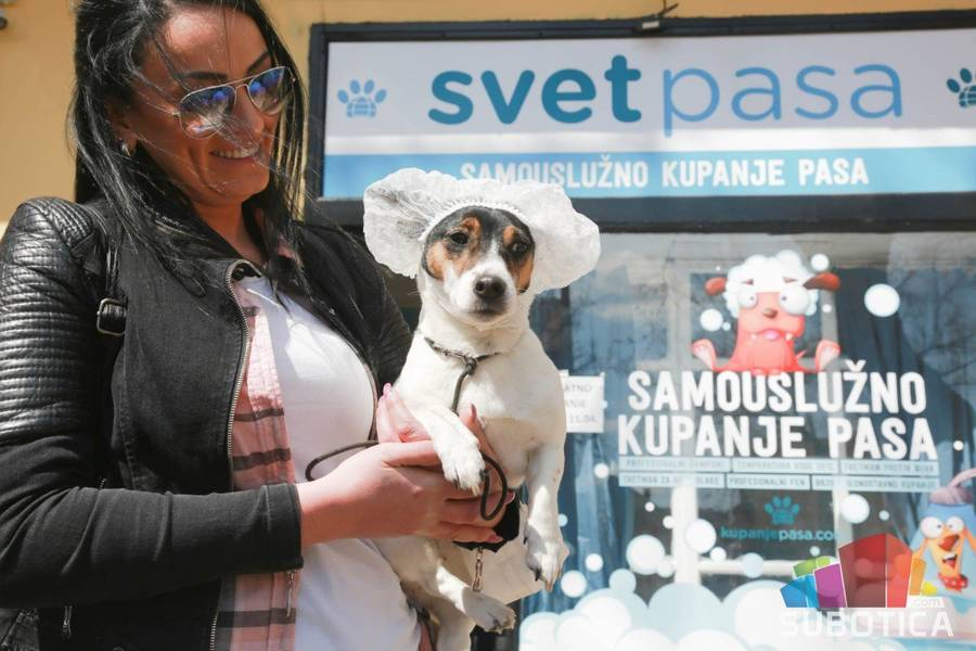 Samouslužno kupanje pasa Subotica