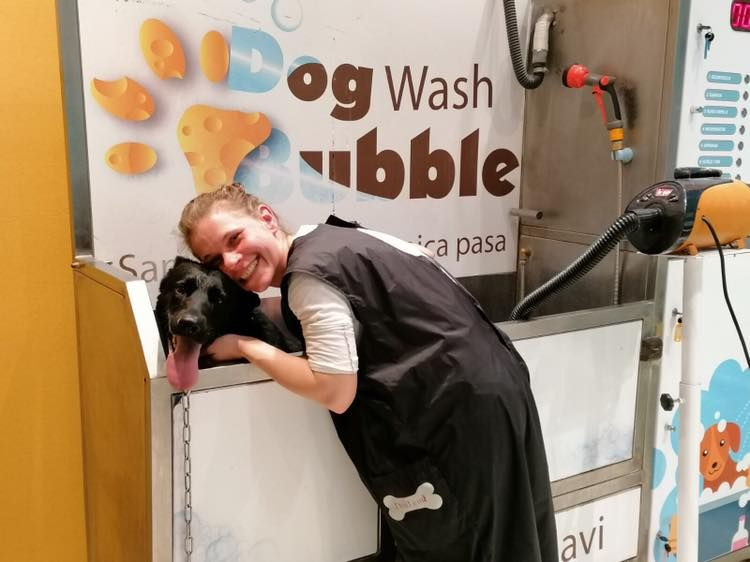 Samouslužno i uslužno kupanje pasa - Dog Wash Bubble Novi Sad